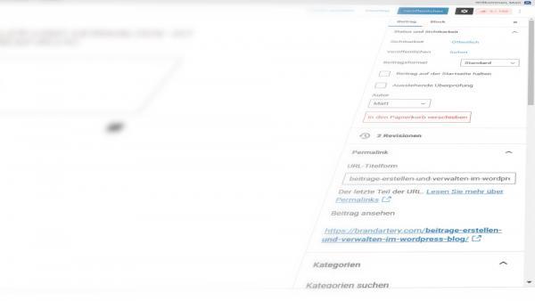 Blog-Beiträge in WordPress erstellen und verwalten: Die richtige Konfiguration